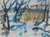 060_Winter an der Müritz | 2010